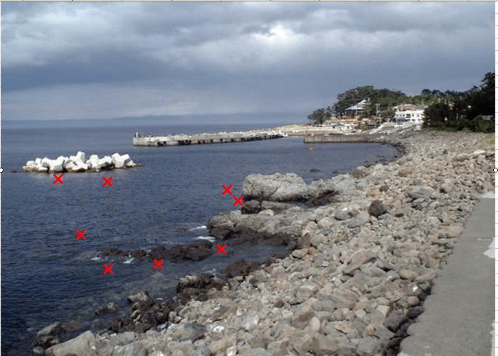 堤防 ゴロタ浜