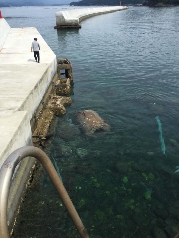 広田漁港左外側堤防2016-07-21 9 00 48