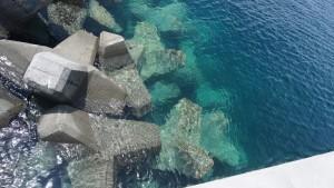 20160712_111747崎浜漁港(南部)