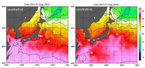 三陸海水温